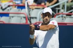 Djokovic en action