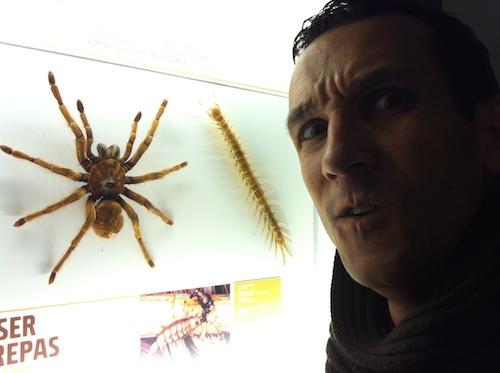 07_insectarium_montreal