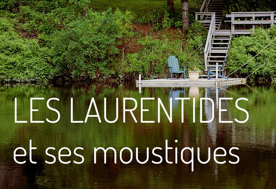 Les Laurentides et ses moustiques